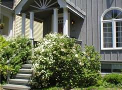 Front porch, windows and siding