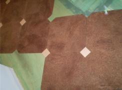 Cork Floor Sample